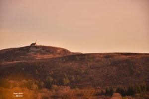 La chapelle du mont Saint-Michel de Braspart dans les Monts d'Arrée